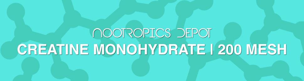 Buy Creatine Monohydrate Micronized 200 Mesh Powder