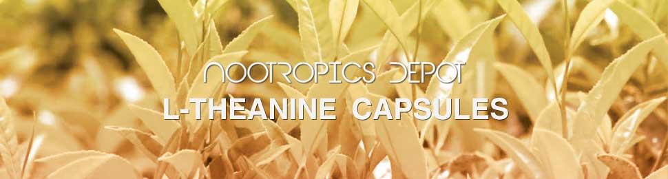 L-theanine Capsules