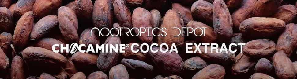 Buy Chocamine Cocoa Extract