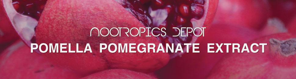 Buy Pomegranate Extract